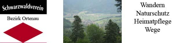 http://swv-bezirk-ortenau.de - Hom