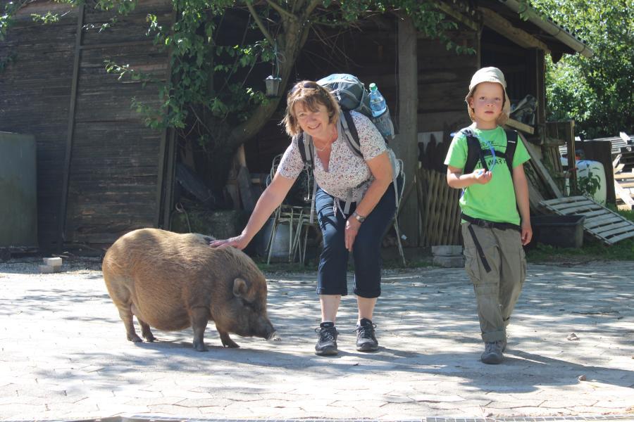 2017-06-11 Familienwanderung mit Eseln